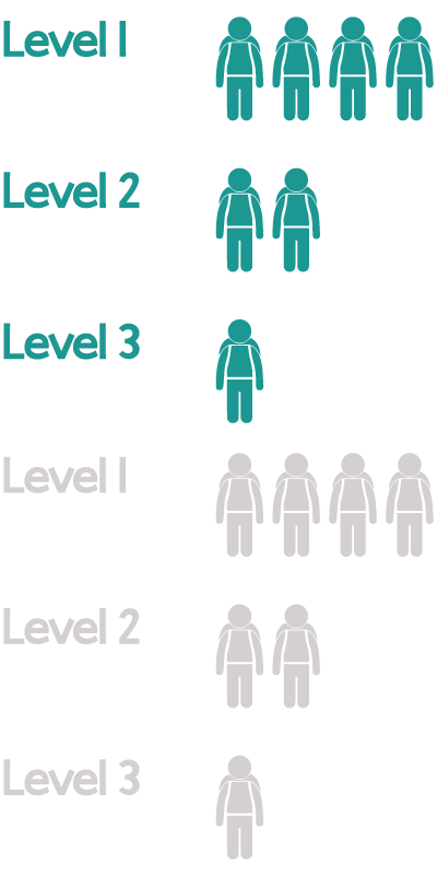 Students are separated into 3 different learning levels and taught at that level